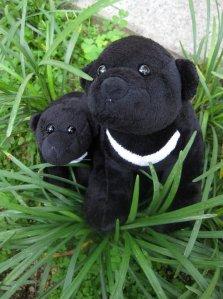 Mama & Baby bear